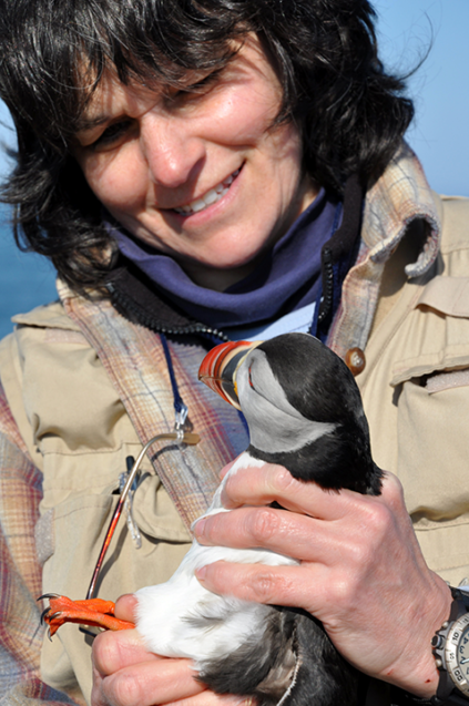 Professor Holberton with puffin